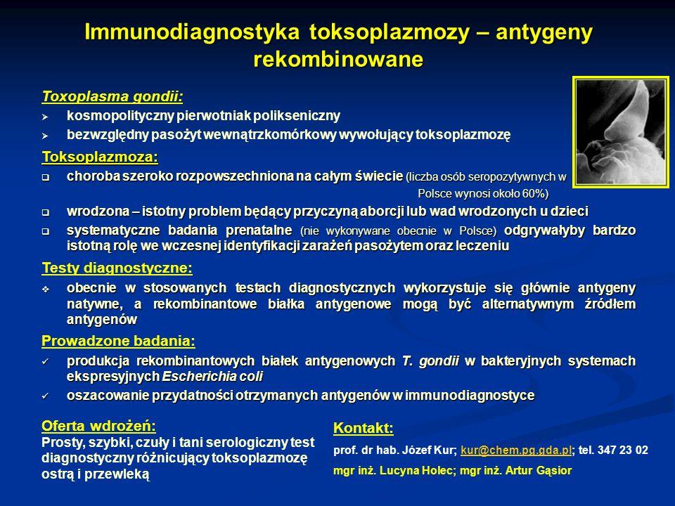 Immunodiagnostyka toksoplazmozy – antygeny rekombinowane Toxoplasma gondii: kosmopolityczny pierwotniak polikseniczny bezwzględny pasożyt wewnątrzkomó