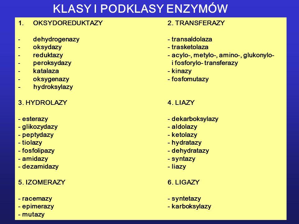 KLASY I PODKLASY ENZYMÓW 1.OKSYDOREDUKTAZY2. TRANSFERAZY -dehydrogenazy- transaldolaza -oksydazy- trasketolaza -reduktazy- acylo-, metylo-, amino-, gl