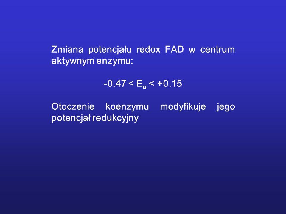 Zmiana potencjału redox FAD w centrum aktywnym enzymu: -0.47 < E o < +0.15 Otoczenie koenzymu modyfikuje jego potencjał redukcyjny