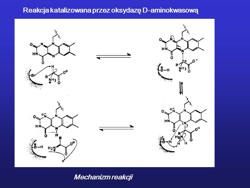 Mechanizm reakcji