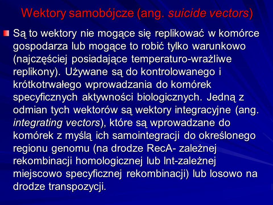 Wektory samobójcze (ang. suicide vectors) Są to wektory nie mogące się replikować w komórce gospodarza lub mogące to robić tylko warunkowo (najczęście