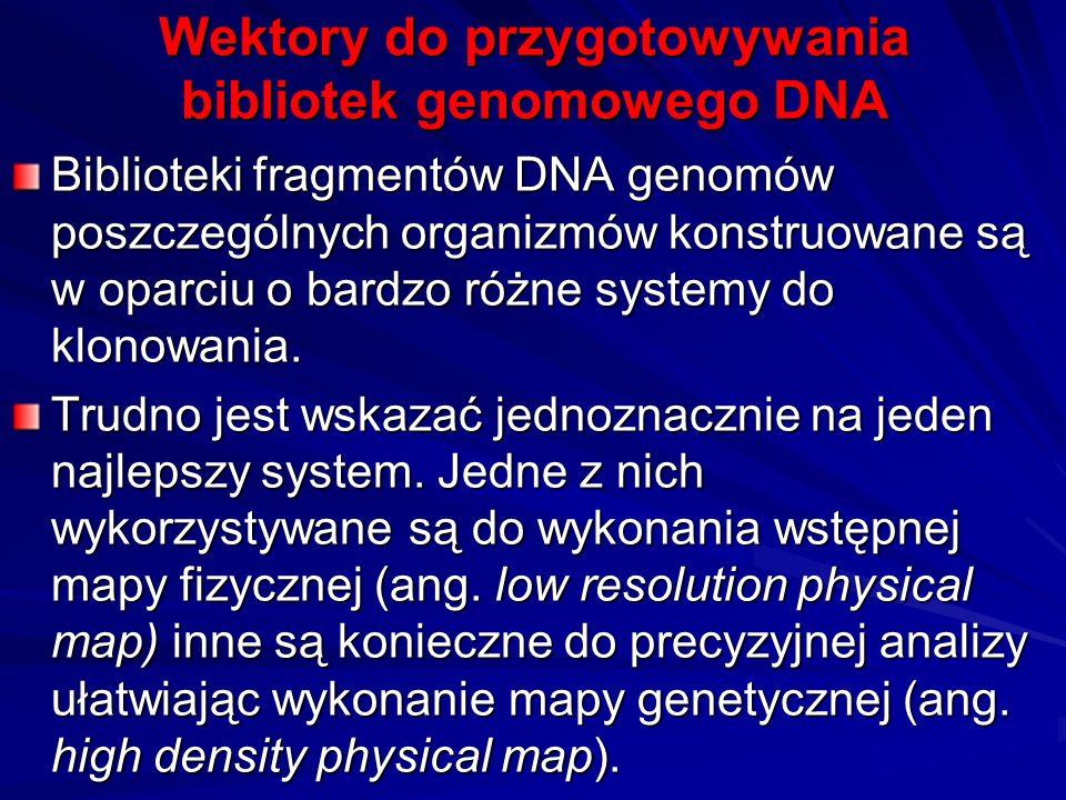 Wektory do przygotowywania bibliotek genomowego DNA Biblioteki fragmentów DNA genomów poszczególnych organizmów konstruowane są w oparciu o bardzo róż