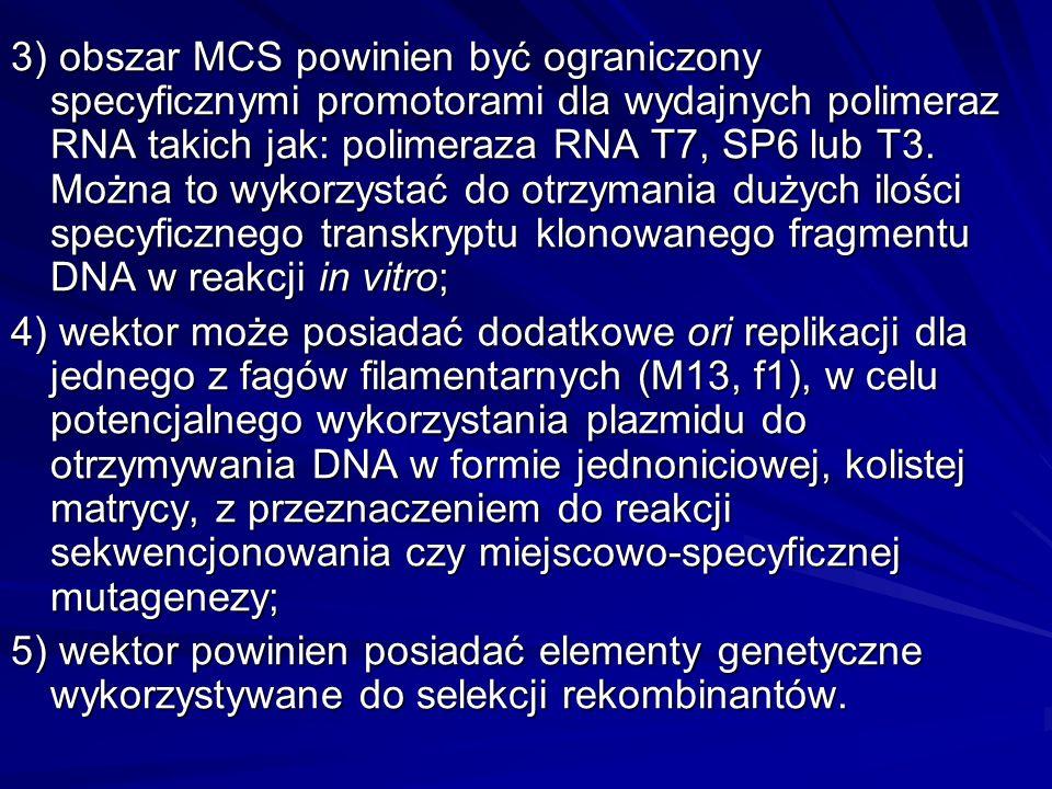 Wektory do przygotowywania bibliotek genomowego DNA Charakteryzują się one: ogromnym potencjałem do stabilnego utrzymywania dużych fragmentów DNA (50- 1000 kpz), w kolejnych pokoleniach klonu gospodarza (wysoka stabilność strukturalna i segregacyjna wektora), możliwością selekcji i identyfikacji rekombinantów względnie łatwą izolacją z organizmu gospodarza.