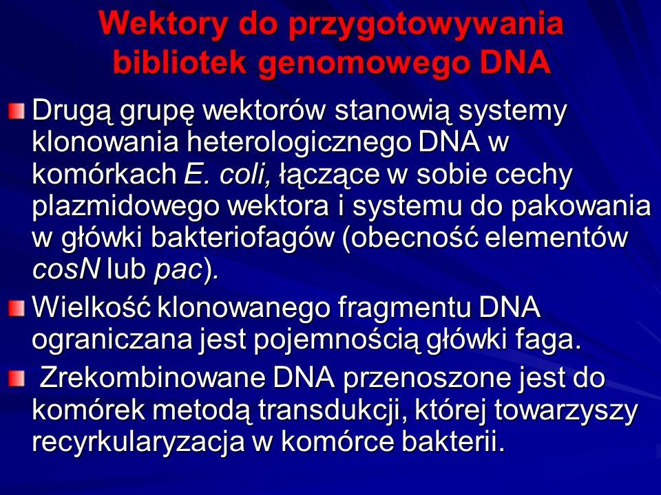 Wektory do przygotowywania bibliotek genomowego DNA Drugą grupę wektorów stanowią systemy klonowania heterologicznego DNA w komórkach E. coli, łączące