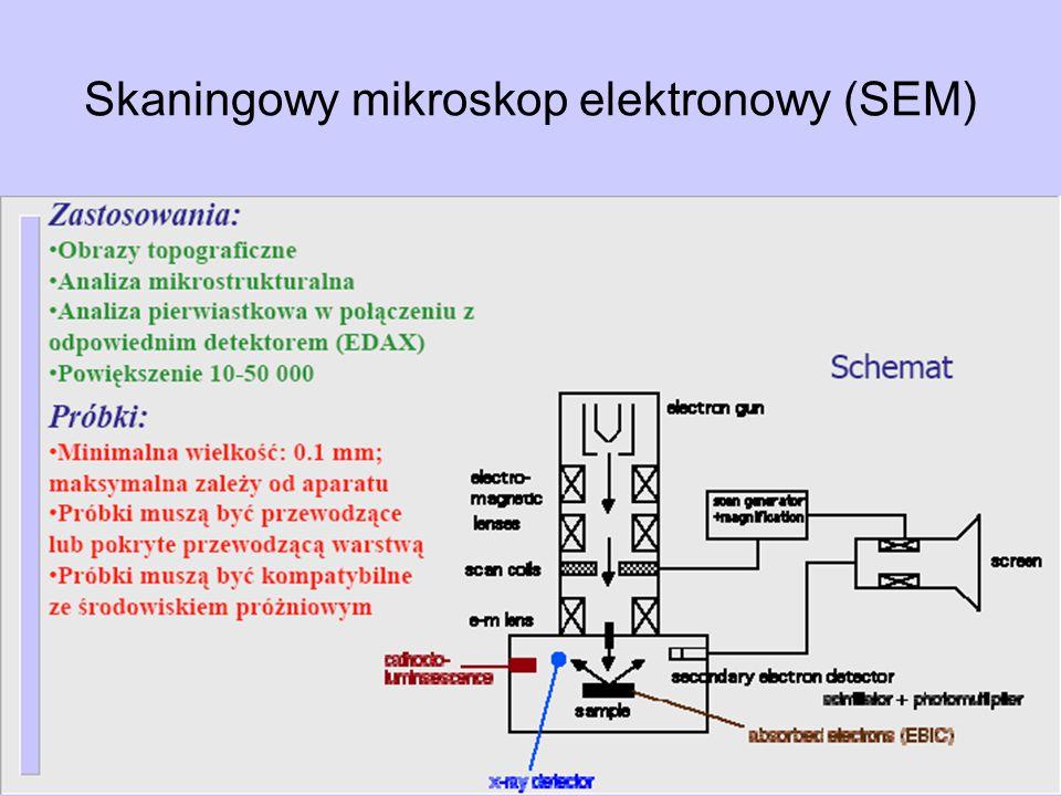 Skaningowy mikroskop elektronowy (SEM)