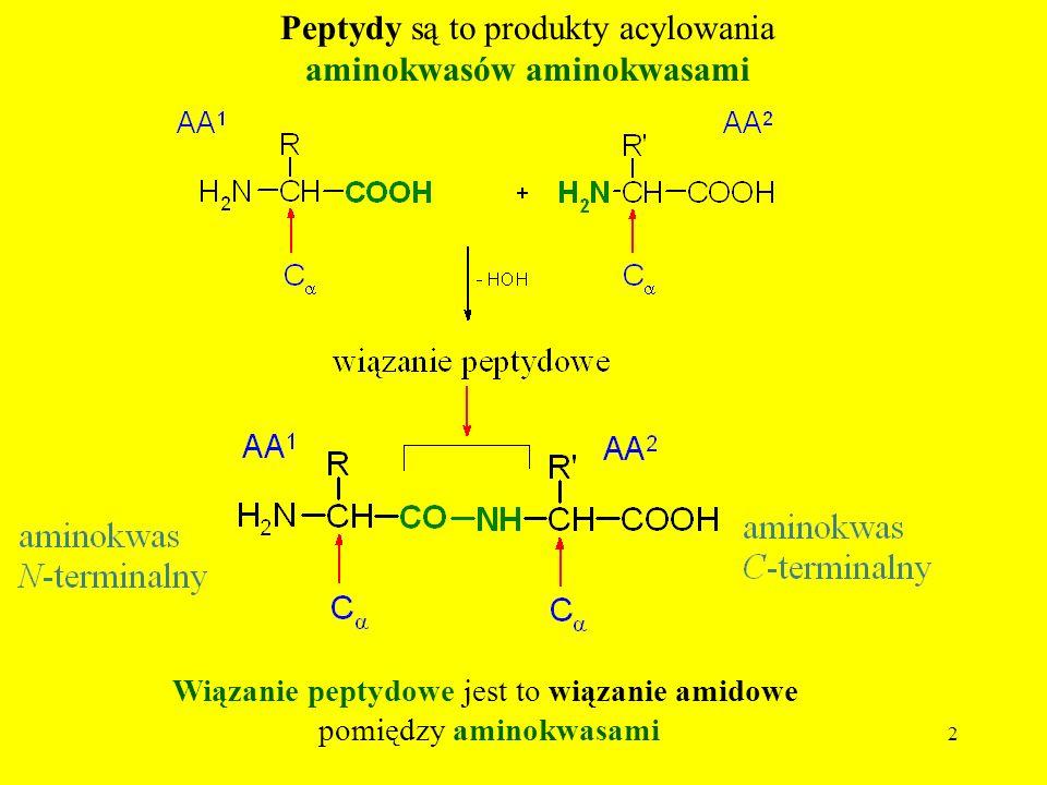 2 Peptydy są to produkty acylowania aminokwasów aminokwasami Wiązanie peptydowe jest to wiązanie amidowe pomiędzy aminokwasami