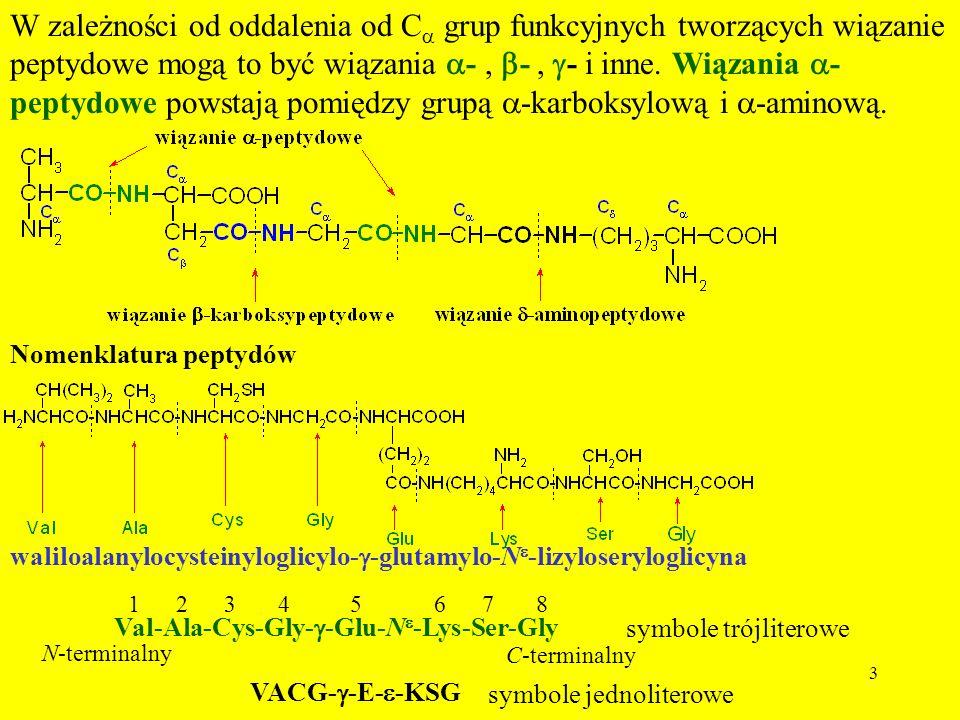 3 W zależności od oddalenia od C grup funkcyjnych tworzących wiązanie peptydowe mogą to być wiązania -, -, - i inne. Wiązania - peptydowe powstają pom