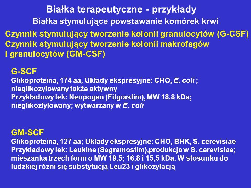 Białka terapeutyczne - przykłady Białka stymulujące powstawanie komórek krwi Czynnik stymulujący tworzenie kolonii granulocytów (G-CSF) Czynnik stymulujący tworzenie kolonii makrofagów i granulocytów (GM-CSF) G-SCF Glikoproteina, 174 aa, Układy ekspresyjne: CHO, E.