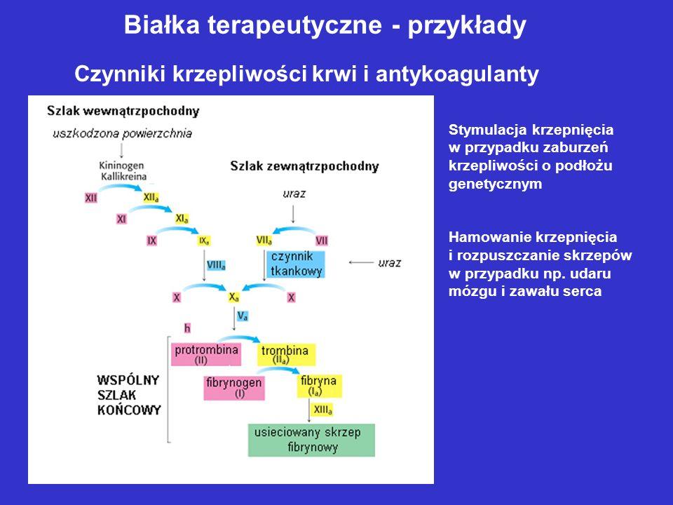 Białka terapeutyczne - przykłady Czynniki krzepliwości krwi i antykoagulanty Stymulacja krzepnięcia w przypadku zaburzeń krzepliwości o podłożu genetycznym Hamowanie krzepnięcia i rozpuszczanie skrzepów w przypadku np.