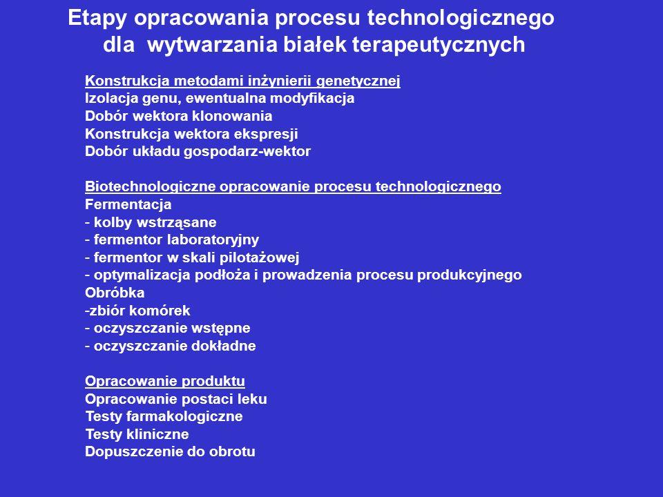 Etapy opracowania procesu technologicznego dla wytwarzania białek terapeutycznych Konstrukcja metodami inżynierii genetycznej Izolacja genu, ewentualna modyfikacja Dobór wektora klonowania Konstrukcja wektora ekspresji Dobór układu gospodarz-wektor Biotechnologiczne opracowanie procesu technologicznego Fermentacja - kolby wstrząsane - fermentor laboratoryjny - fermentor w skali pilotażowej - optymalizacja podłoża i prowadzenia procesu produkcyjnego Obróbka -zbiór komórek - oczyszczanie wstępne - oczyszczanie dokładne Opracowanie produktu Opracowanie postaci leku Testy farmakologiczne Testy kliniczne Dopuszczenie do obrotu