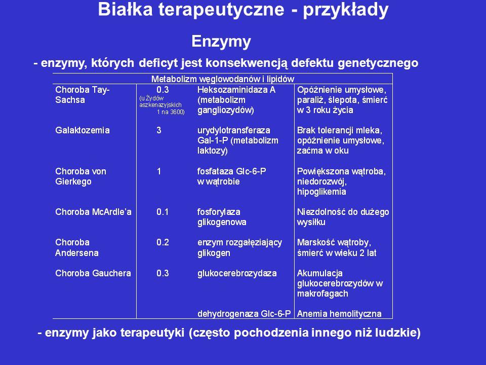 Białka terapeutyczne - przykłady Enzymy - enzymy, których deficyt jest konsekwencją defektu genetycznego - enzymy jako terapeutyki (często pochodzenia innego niż ludzkie)