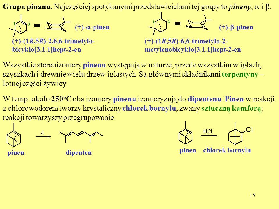 15 Grupa pinanu. Najczęściej spotykanymi przedstawicielami tej grupy to pineny, i. (+)- -pinen (+)-(1R,5R)-2,6,6-trimetylo- bicyklo[3.1.1]hept-2-en (+
