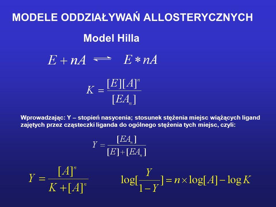MODELE ODDZIAŁYWAŃ ALLOSTERYCZNYCH Model Hilla Wprowadzając: Y – stopień nasycenia; stosunek stężenia miejsc wiążących ligand zajętych przez cząsteczk
