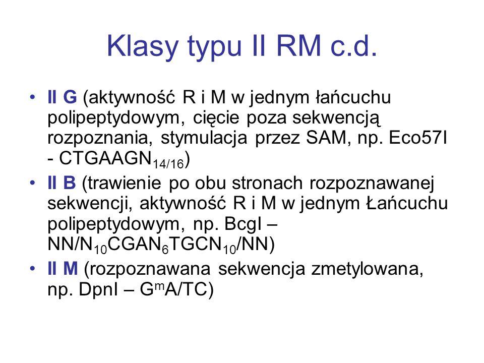 Klasy typu II RM II S (monomery w roztworze; rozpoznają asymetryczną sekwencję; cięcie w zdefiniowanej odległości od sekwencji rozpoznawanej, 1-20 pz;