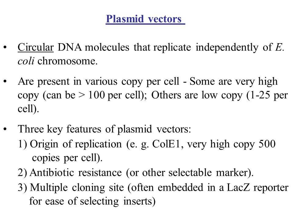 In the 1970s and 1980s The first cloning vectors such as pSC101 had limited functionality The next trend was to develop smaller plasmids Advantages –I