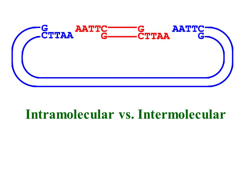 mix foreign and vector DNA in presence of DNA ligase optimal ratios of vector to insert generally 1.5-2:1 intermolecular base-pairing can occur betwee