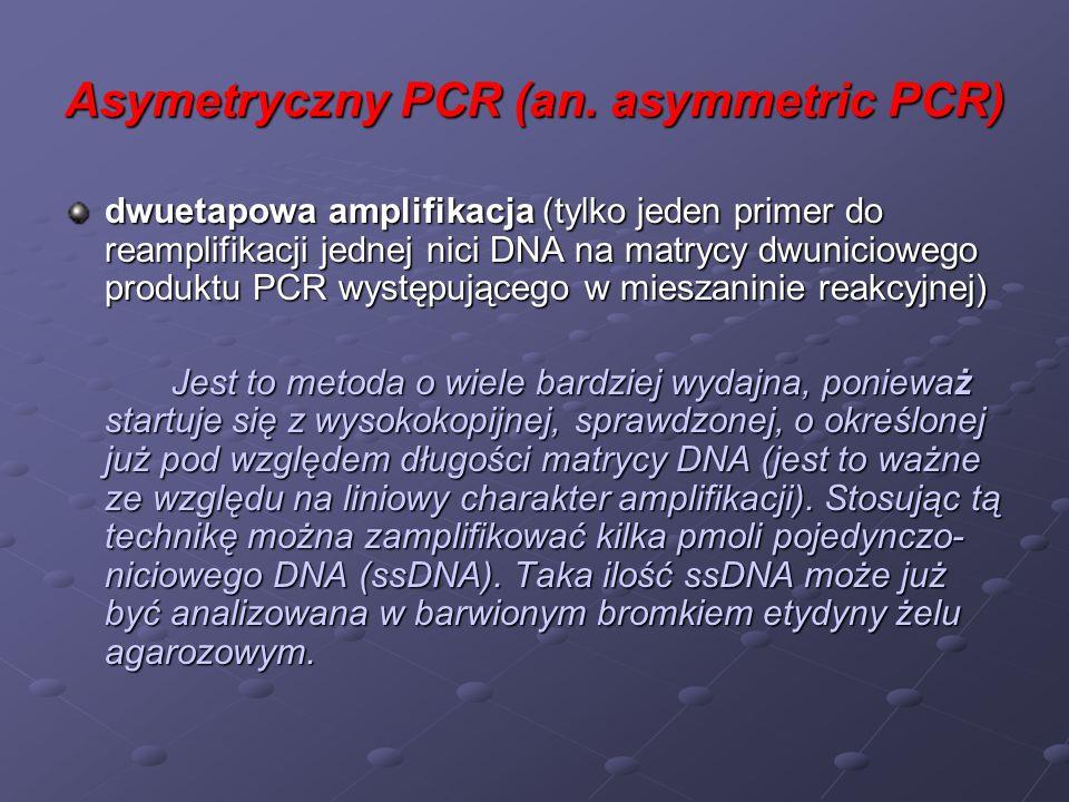 Amplifikacja allelo-specyficzna (ASA, PASA, ASP, ARMS) (ang.