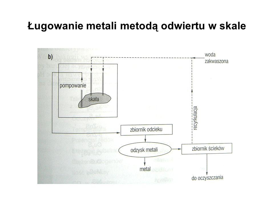 Ługowanie metali metodą odwiertu w skale