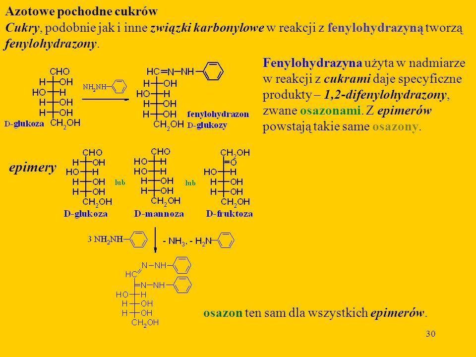 30 Azotowe pochodne cukrów Cukry, podobnie jak i inne związki karbonylowe w reakcji z fenylohydrazyną tworzą fenylohydrazony.