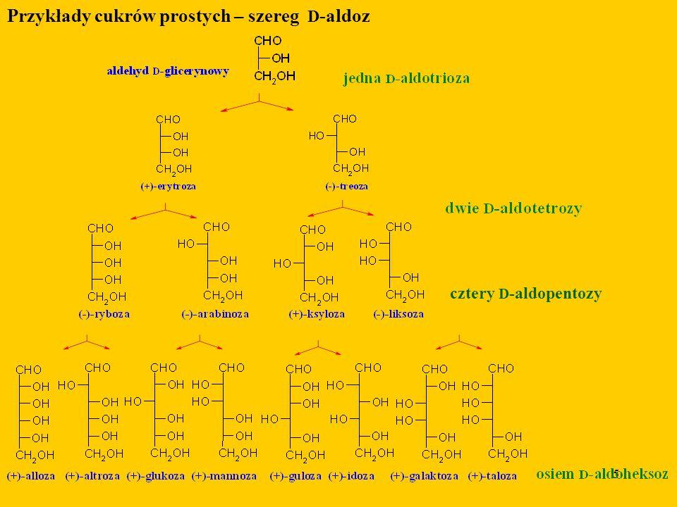 5 Przykłady cukrów prostych – szereg D -aldoz cztery D -aldopentozy