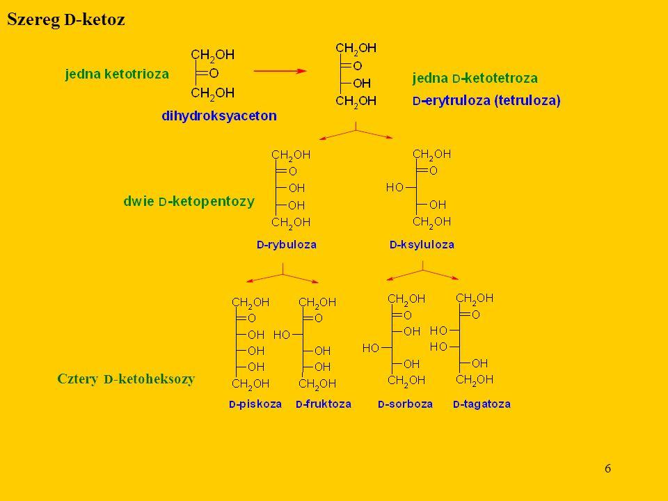 6 Szereg D -ketoz Cztery D -ketoheksozy