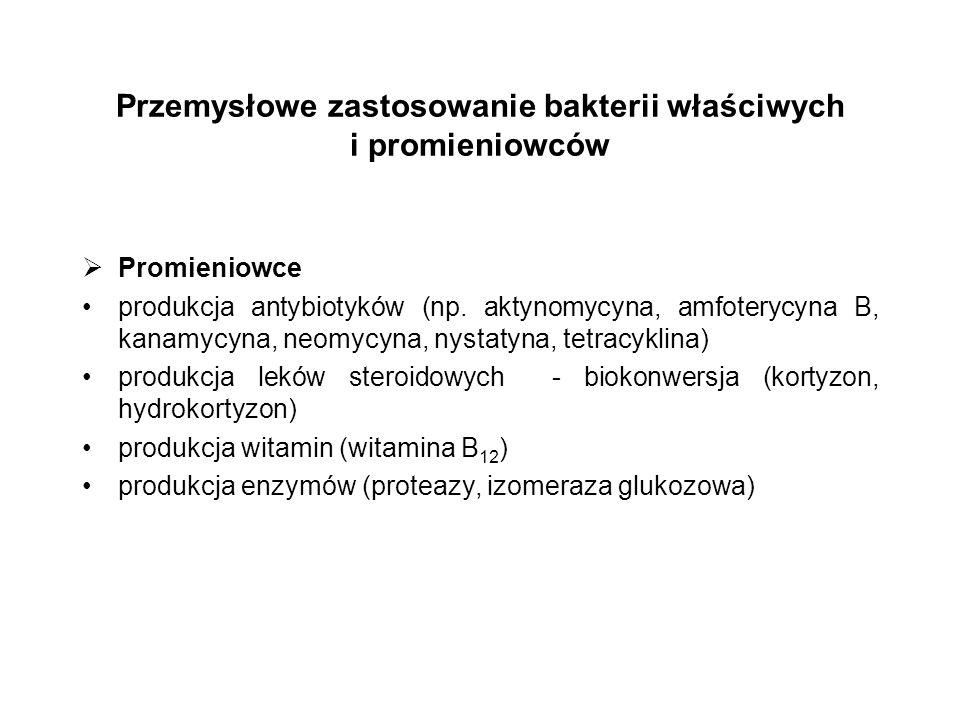 Przemysłowe zastosowanie bakterii właściwych i promieniowców Promieniowce produkcja antybiotyków (np. aktynomycyna, amfoterycyna B, kanamycyna, neomyc
