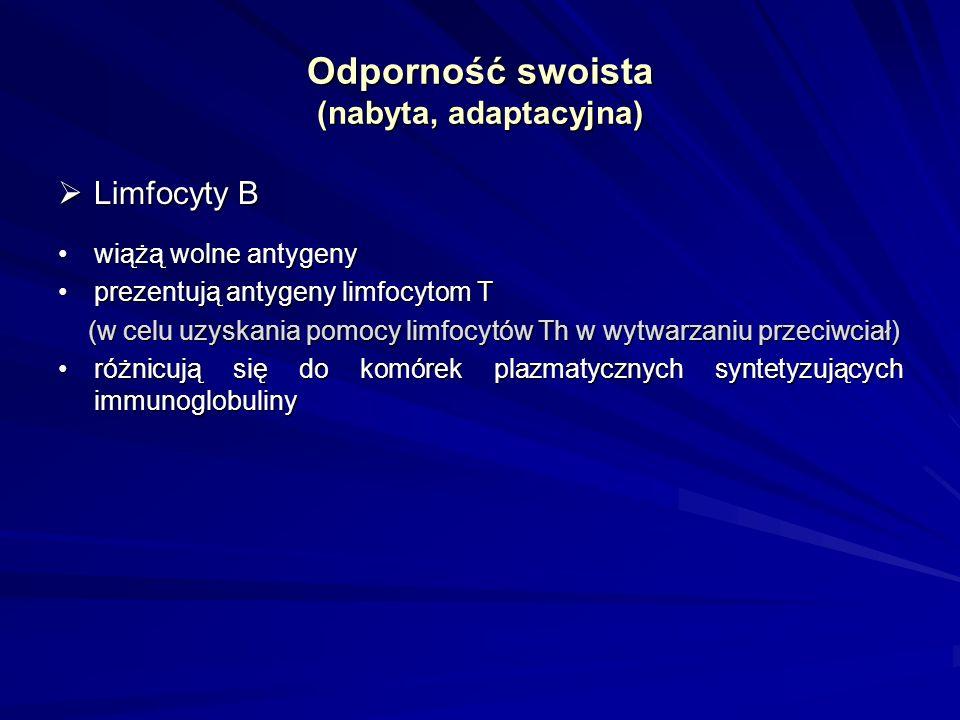 Odporność swoista (nabyta, adaptacyjna) Limfocyty B Limfocyty B wiążą wolne antygenywiążą wolne antygeny prezentują antygeny limfocytom Tprezentują an