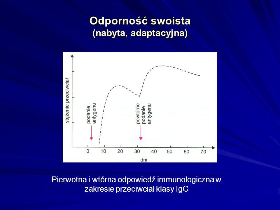 Odporność swoista (nabyta, adaptacyjna) Pierwotna i wtórna odpowiedź immunologiczna w zakresie przeciwciał klasy IgG