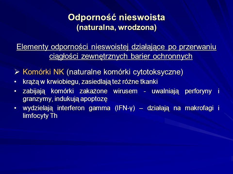Odporność nieswoista (naturalna, wrodzona) Elementy odporności nieswoistej działające po przerwaniu ciągłości zewnętrznych barier ochronnych Komórki dendrytyczne Komórki dendrytyczne występują w skórze i tkankach limfatycznych (strefa grasiczozależna węzłów chłonnych, ośrodki rozmnażania limfocytów B w tkankach limfatycznych)występują w skórze i tkankach limfatycznych (strefa grasiczozależna węzłów chłonnych, ośrodki rozmnażania limfocytów B w tkankach limfatycznych) prezentują antygeny limfocytom Thprezentują antygeny limfocytom Th przechowują na swojej powierzchni nienaruszone antygeny umożliwiając ich wiązanie przez limfocyty Bprzechowują na swojej powierzchni nienaruszone antygeny umożliwiając ich wiązanie przez limfocyty B Działają na pograniczu odporności swoistej i nieswoistej.