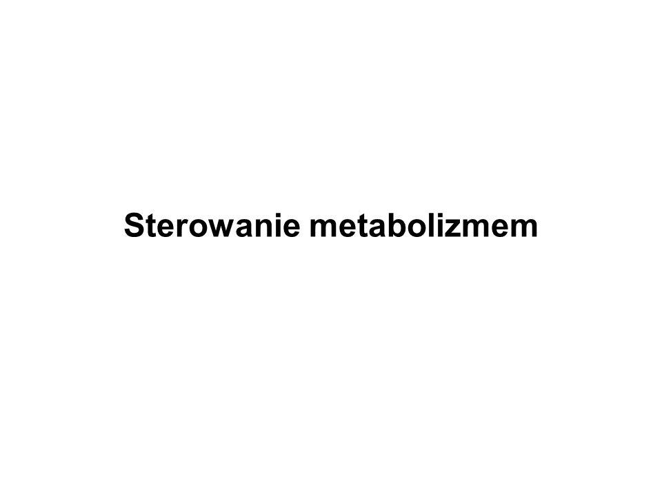 Wydajna produkcja metabolitu Zakłócenie procesów metabolicznych Przejściowe Trwałe zmiana warunków modyfikacja środowiska genotypu