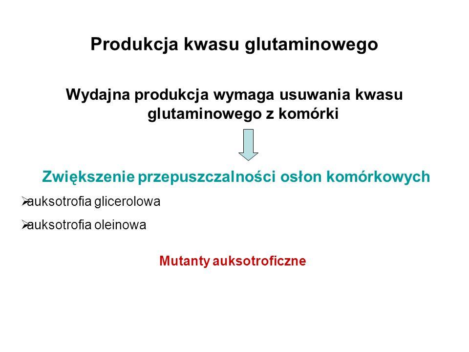 Produkcja kwasu glutaminowego Wydajna produkcja wymaga usuwania kwasu glutaminowego z komórki Zwiększenie przepuszczalności osłon komórkowych auksotro