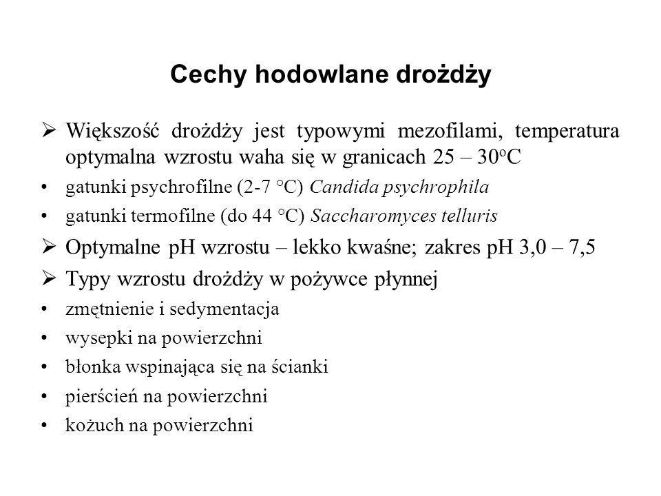 Cechy hodowlane drożdży Większość drożdży jest typowymi mezofilami, temperatura optymalna wzrostu waha się w granicach 25 – 30 o C gatunki psychrofiln