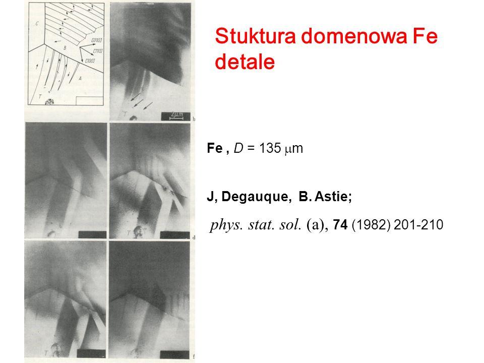 Stuktura domenowa Fe detale Fe, D = 135 m J, Degauque, B. Astie; phys. stat. sol. (a), 74 (1982) 201-210