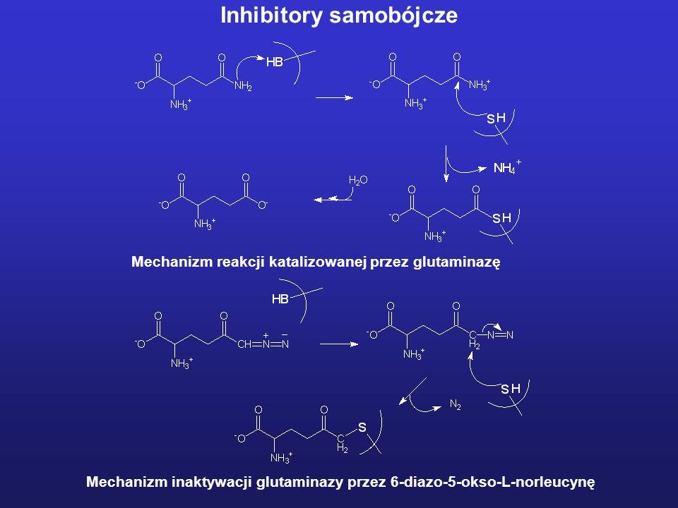 Mechanizm reakcji katalizowanej przez glutaminazę Mechanizm inaktywacji glutaminazy przez 6-diazo-5-okso-L-norleucynę Inhibitory samobójcze