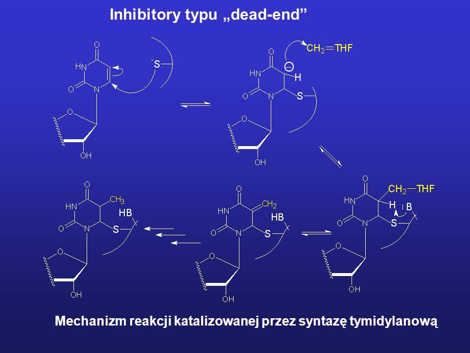 Inhibitory typu dead-end Mechanizm reakcji katalizowanej przez syntazę tymidylanową