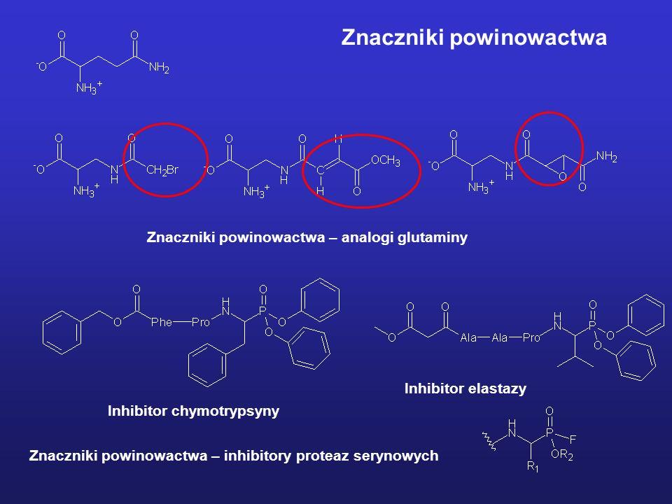 Znaczniki powinowactwa – analogi glutaminy Znaczniki powinowactwa – inhibitory proteaz serynowych Inhibitor chymotrypsyny Inhibitor elastazy Znaczniki