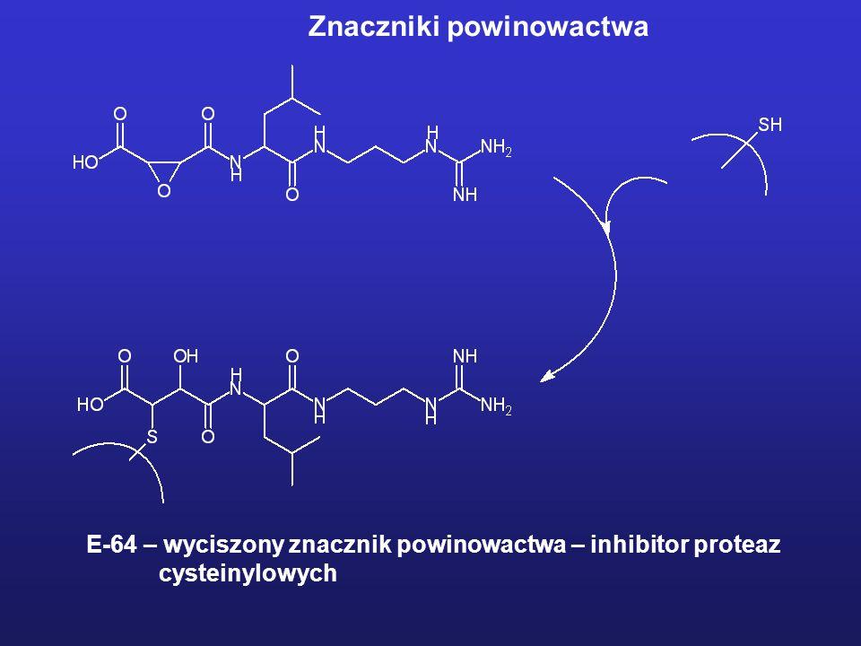 E-64 – wyciszony znacznik powinowactwa – inhibitor proteaz cysteinylowych Znaczniki powinowactwa