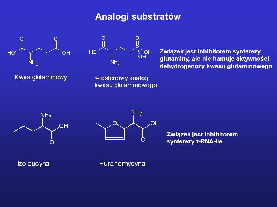 Związek jest inhibitorem syntetazy glutaminy, ale nie hamuje aktywności dehydrogenazy kwasu glutaminowego Związek jest inhibitorem syntetazy t-RNA-Ile