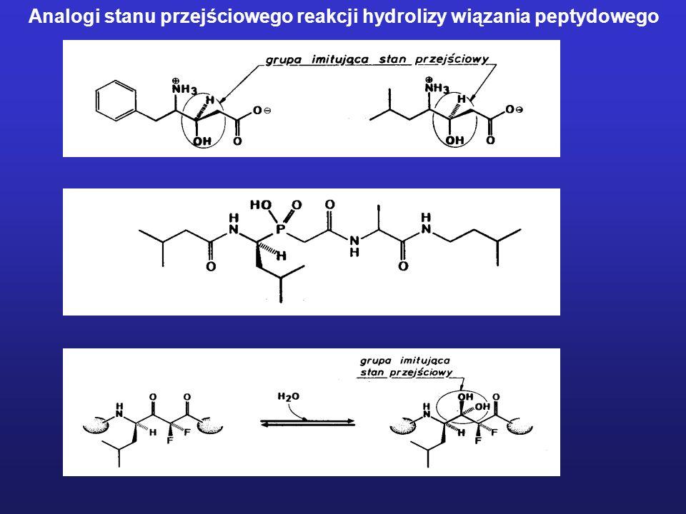 Analogi stanu przejściowego reakcji hydrolizy wiązania peptydowego