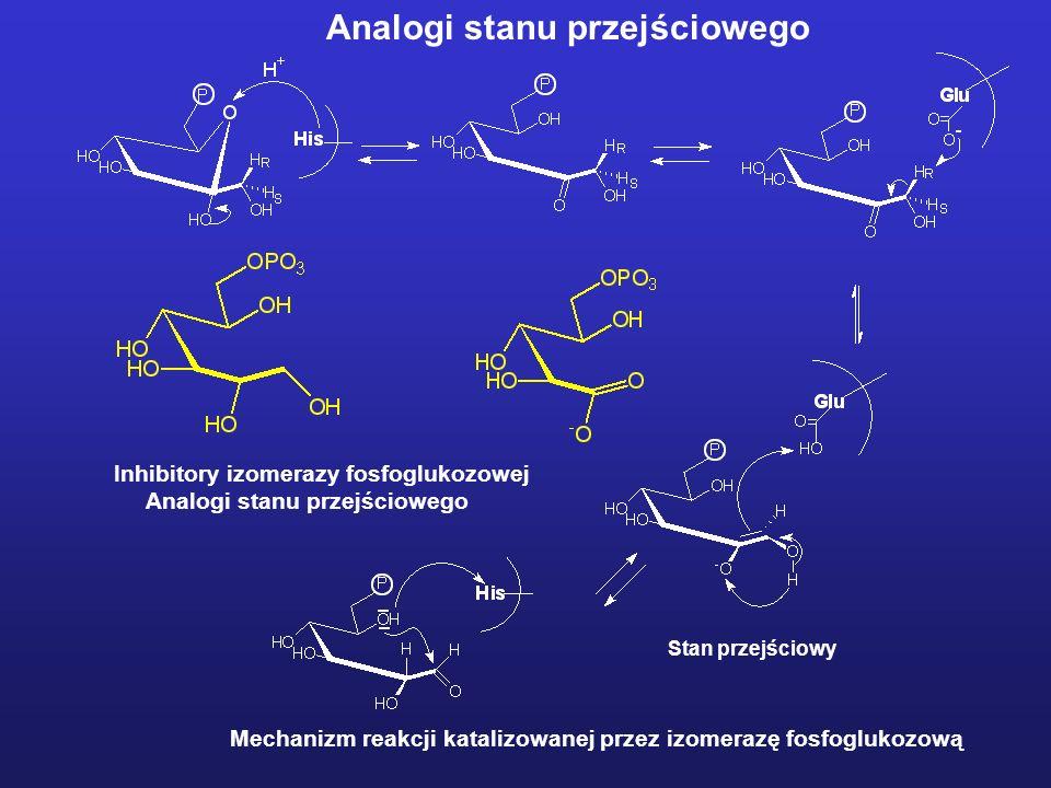 Stan przejściowy Mechanizm reakcji katalizowanej przez izomerazę fosfoglukozową Inhibitory izomerazy fosfoglukozowej Analogi stanu przejściowego