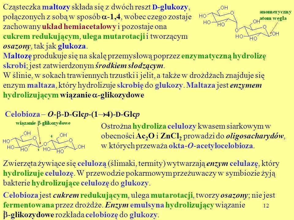 12 Cząsteczka maltozy składa się z dwóch reszt D -glukozy, połączonych z sobą w sposób -1,4, wobec czego zostaje zachowany układ hemiacetalowy i pozos