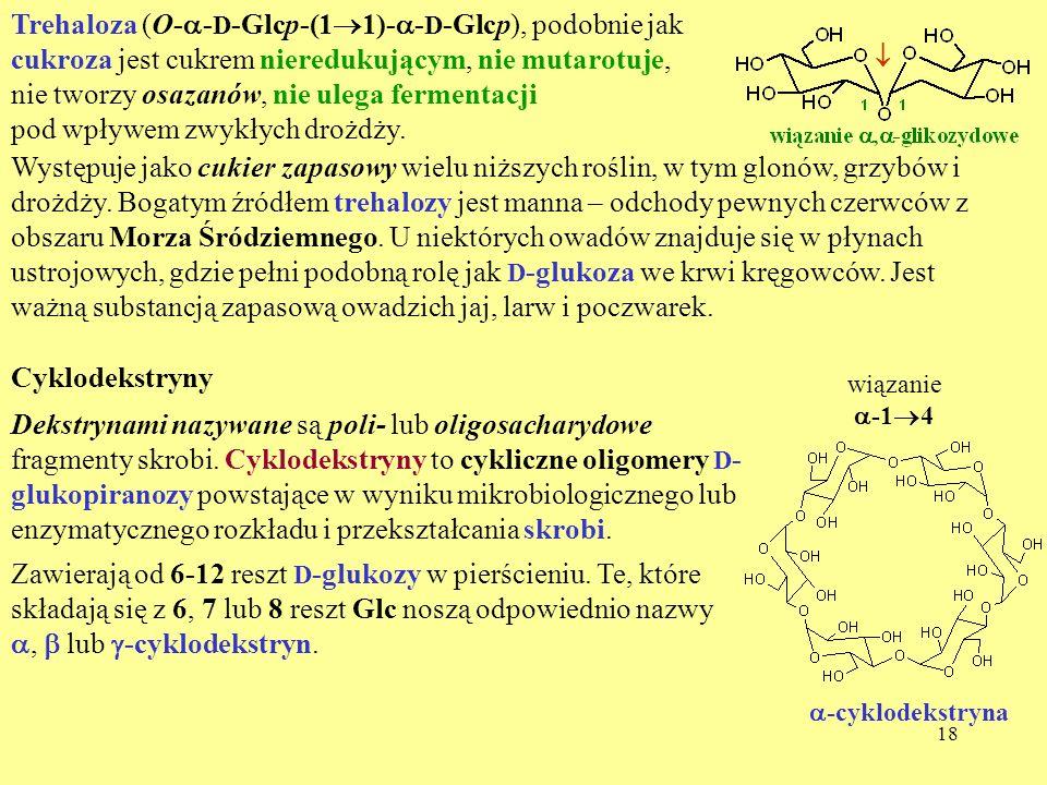18 Trehaloza (O- - D -Glcp-(1 1)- - D -Glcp), podobnie jak cukroza jest cukrem nieredukującym, nie mutarotuje, nie tworzy osazanów, nie ulega fermenta