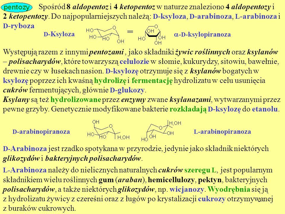 2 Spośród 8 aldopentoz i 4 ketopentoz w naturze znaleziono 4 aldopentozy i D -Ksyloza Występują razem z innymi pentozami, jako składniki żywic roślinn