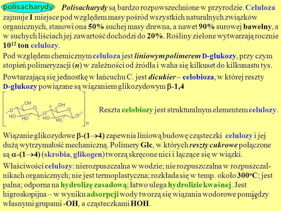 21 Polisacharydy są bardzo rozpowszechnione w przyrodzie. Celuloza zajmuje I miejsce pod względem masy pośród wszystkich naturalnych związków organicz