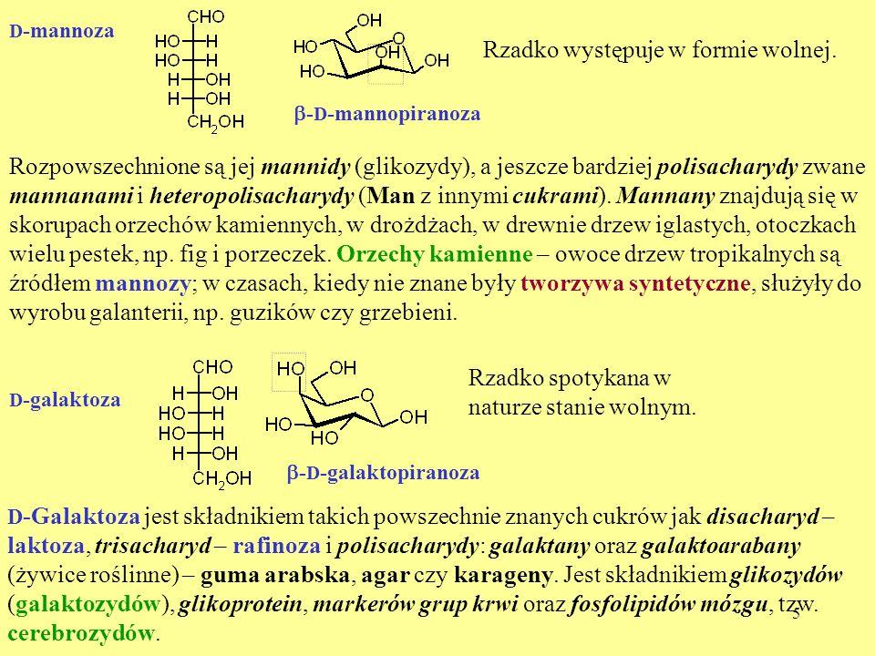 5 D -mannoza - D -mannopiranoza Rzadko występuje w formie wolnej. Rozpowszechnione są jej mannidy (glikozydy), a jeszcze bardziej polisacharydy zwane