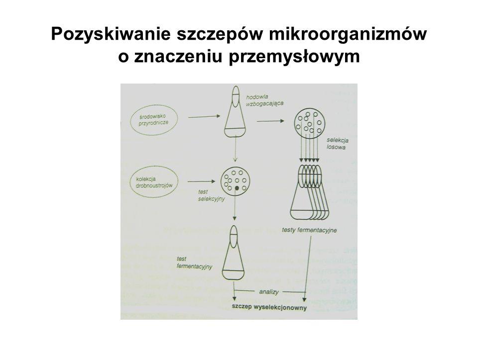 Pozyskiwanie nowych szczepów mikroorganizmów o znaczeniu przemysłowym 1.Pobranie próby ze środowiska 2.Hodowla wzbogacająca 3.Testy selekcyjne 4.Testy fermentacyjne 5.Identyfikacja gatunkowa wybranego mikroorganizmu