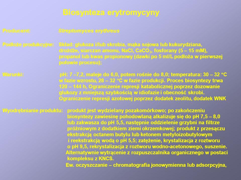 Wytwarzanie Penicyliny G – obróbka poprodukcyjna
