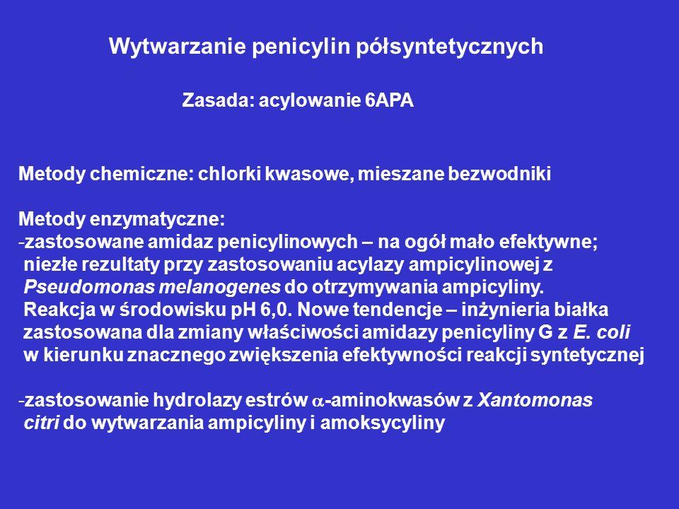 Wytwarzanie penicylin półsyntetycznych Zasada: acylowanie 6APA Metody chemiczne: chlorki kwasowe, mieszane bezwodniki Metody enzymatyczne: -zastosowan