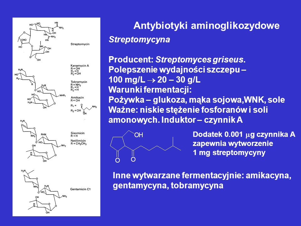 Antybiotyki aminoglikozydowe Streptomycyna Producent: Streptomyces griseus. Polepszenie wydajności szczepu – 100 mg/L 20 – 30 g/L Warunki fermentacji: