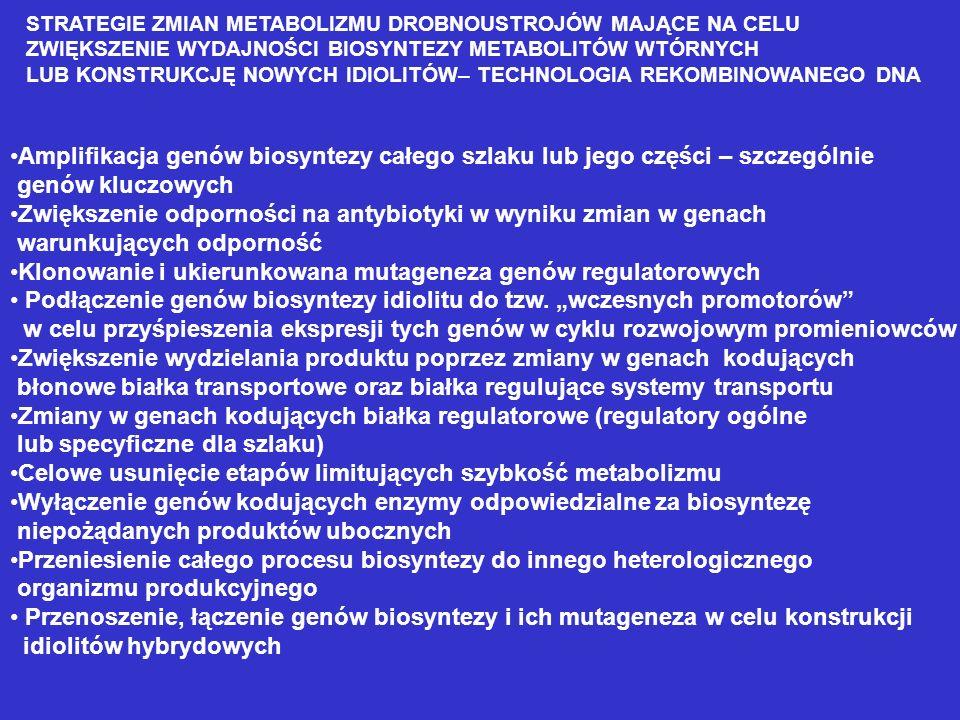 Antybiotyki -laktamowe - cefalosporyny